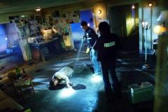 """Seriál Kriminálka Las Vegas, třetí díl """"Zlá krev"""" (sezona 15)."""