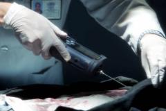 """Seriál Kriminálka Las Vegas, dvanáctý díl """"Mrtvý les"""" (sezona 15)."""
